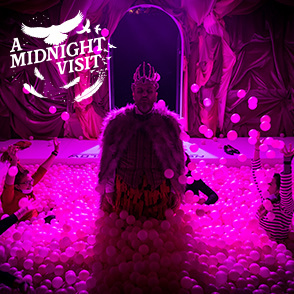 Unmissable new show: A Midnight Visit